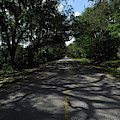Dixie Highway In Micanopy Florida by Roger Epps
