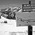Do Not Enter Snowbird Here Black And White by Adam Jewell