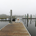 Dockside Fog - Rivertowne On The Wando by Dale Powell