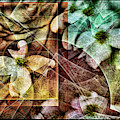 Dogwood Abstract by Tim Palmer