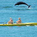 Dolphin Leaping Over Two Rowers by Keith Morris
