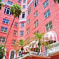 Don Cesar Pinks by Alice Gipson