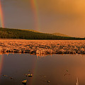 Double Rainbow Light by Leland D Howard