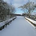 Downan Bridge - Glenlivet by Phil Banks