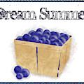 Dream Summer - Basket Of Blueberries by Colleen Cornelius