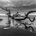 Dreamy Tide In Black And White by Debra and Dave Vanderlaan