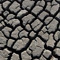Drought by Arterra Picture Library