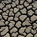 Dry Mud by Arterra Picture Library