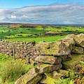 Drystone Wall, Danby, North York Moors by David Ross