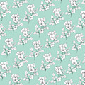 Duchess Teal White Flowers by Sharon Mau