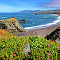 Duncans Landing On The Sonoma Coast by Carolyn Derstine