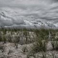 Dunes Day by Judy Hall-Folde