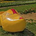 Dutch Clog And Tulip Field by Susan Candelario