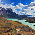 Early Autumn In Patagonia. National by Kavram