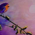 Early Bird by Jacqueline Athmann