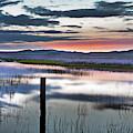 Early Morning Stillness by Leland D Howard