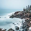 East Coast Winters by Evelina Kremsdorf