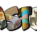 Easter Big Letter by Colleen Cornelius