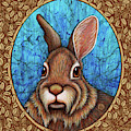 Eastern Cottontail Portrait - Brown Border by Amy E Fraser