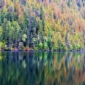 Echo Lake Autumn Shore by Allan Van Gasbeck