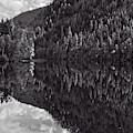 Echo Lake Reflection Black And White by Allan Van Gasbeck
