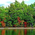 Echo Lake Reflections by Patti Whitten