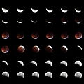 Eclipse, In All Phases Of The Moon by Arturogi