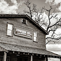 Edwards Water Mill At College Of The Ozarks - Sepia by Gregory Ballos