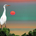 Egret At Evening by Susan Burger
