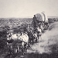 Eight Horse Heavy Freight Wagon by American School