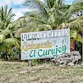 El Curujey Sign by Sharon Popek