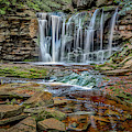 Elakala Falls 1020 by Donald Brown