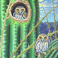 Elf Owls In The Saguaro Cactus by Tish Wynne