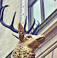 Elks Club by JAMART Photography
