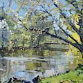 Ellicott Creek Park by Ylli Haruni
