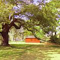 Beneath The Old Emancipation Oak Tree by Ola Allen