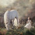 Emily's Dream by Melinda Hughes-Berland