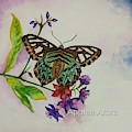 Enchanting Butterfly by Applee Arora