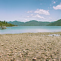 Endeavour Inlet New Zealand by Joan Carroll