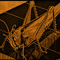 Escher 172 by Rob Hans