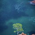 Esterel Mountains by Lp Photographie
