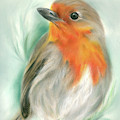 European Robin With Pine by MM Anderson