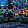 Evening In Bryant Park by Alison Frank