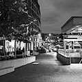 Evening In Harvard Square Cambridge Ma Black And White by Toby McGuire