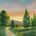 Evening Light On The Meadow by Douglas Castleman