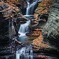 Every Teardrop Is A Waterfall by Evelina Kremsdorf