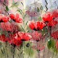 Everything About Poppies by Suzann Sines