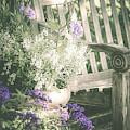 Fading Garden  by Julie Palencia