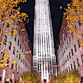 Fall At Rockefeller Center by Jacqui Boonstra