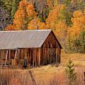 Fall Cabin - 3 by Jonathan Hansen